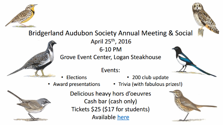 Bridgerland Audubon Society Annual Meeting and Social