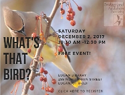 What's That Bird?  Introduction to Backyard Birds of Cache Valley and How to Help with the Annual Christmas Bird Count by Looking Out Your Window.  Presentations by Lisa Stoner and Scott Erickson  Saturday, December 2, 2017 10:30 a.m. - 12:30 p.m. Jim Bridger Room Logan Library