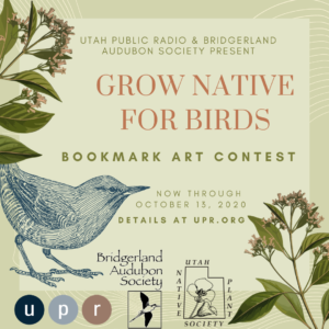 Grow Native For Birds: Utah Public Radio and Bridgerland Audubon Society Present GROW NATIVE FOR BIRDS Bookmark Art Contest Now through October 13, 2020 Details at UPR.org