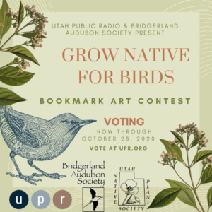 Utah Public Radio and Bridgerland Audubon Society Present GROW NATIVE FOR BIRDS Bookmark Art Contest Vote for your favorite through October 28, 2020 -One Vote Only