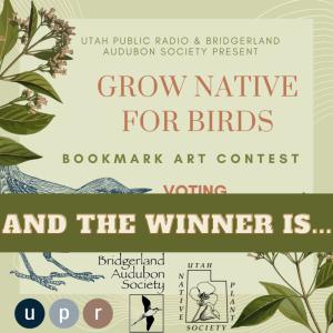 Utah Public Radio and Bridgerland Audubon Society Present GROW NATIVE FOR BIRDS Bookmark Art Contest Winner Evan Tynan