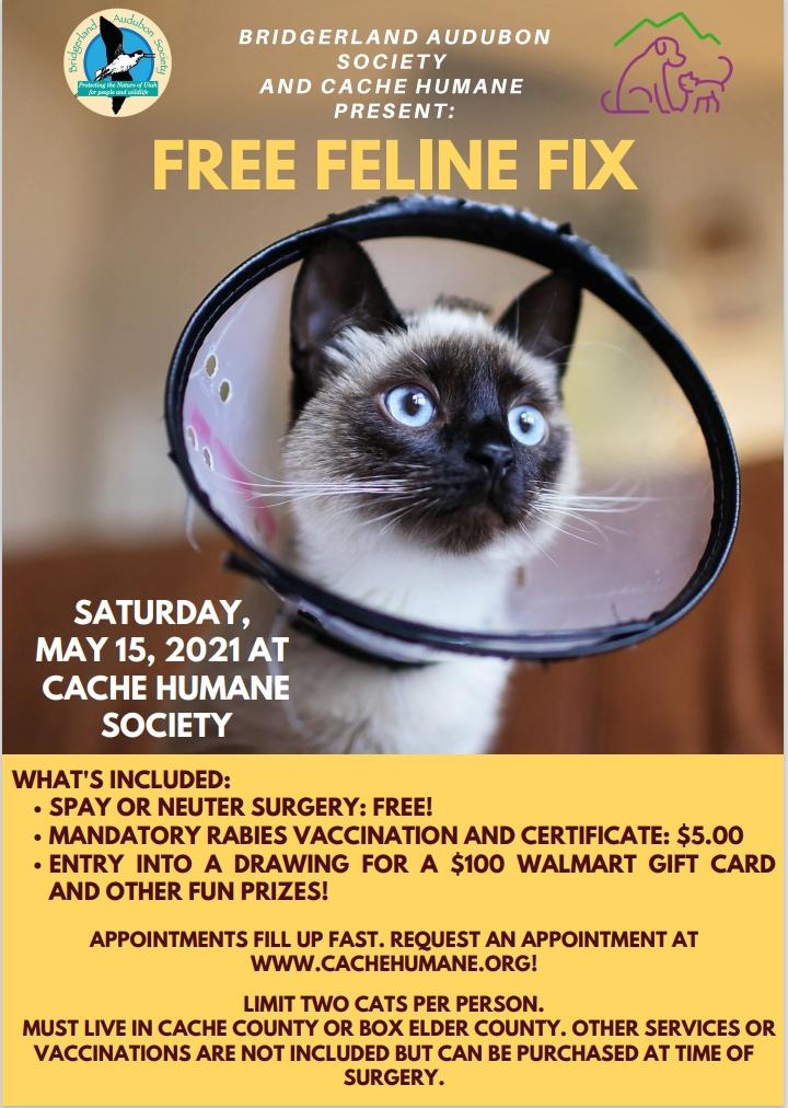 Bridgerland Audubon and Cache Humane Present Free Feline Fix Saturday May 15, 2021 at Cache Humane Society, 2370 W. 200 N., Logan, UT 84321