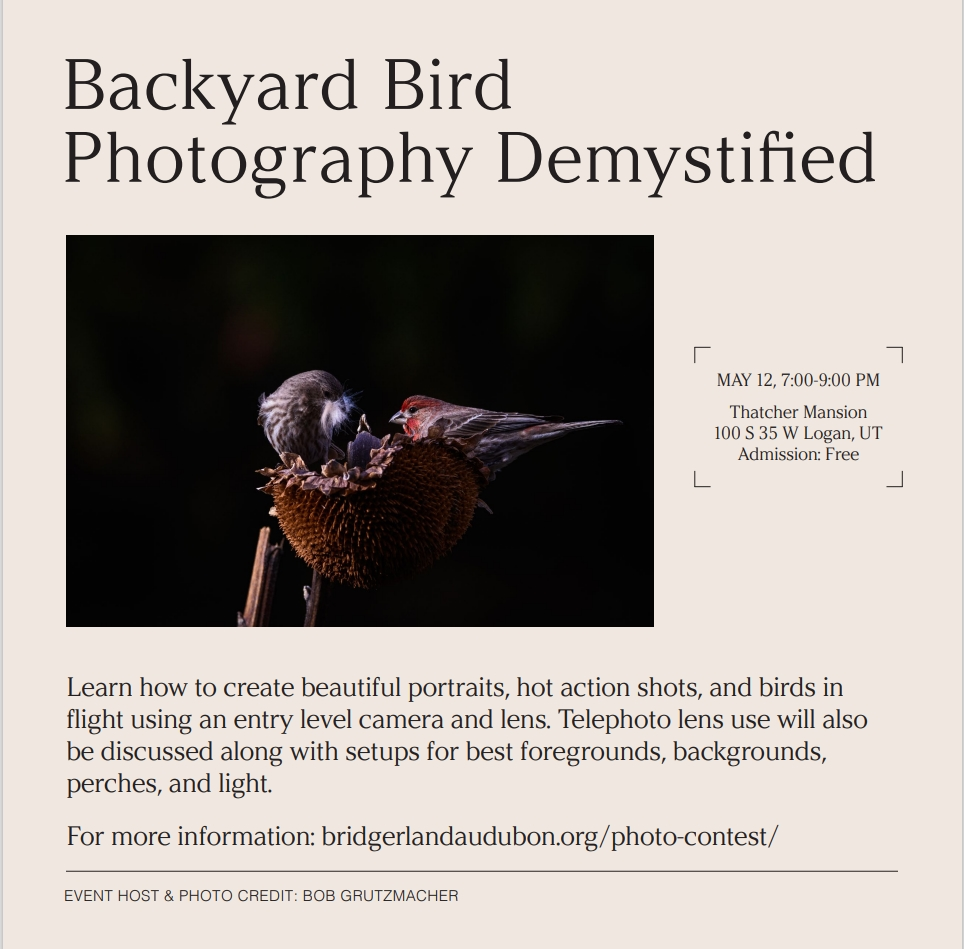 Backyard Bird Photography Demystified Learn how to create beautiful portraits, hot action shots, and birds in flight using an entry level camera and lens. Telephoto lens use will also be discussed along with setups for best foregrounds, backgrounds, perches, and light. For more information: bridgerlandaudubon.org/photo-contest/ MAY 12, 7:00-9:00 PM Thatcher Mansion 100 S 35 W Logan, UT Admission: Free Event Host & Photo Credit: Bob Grutzmacher Poster Credit: Sarah Hogg