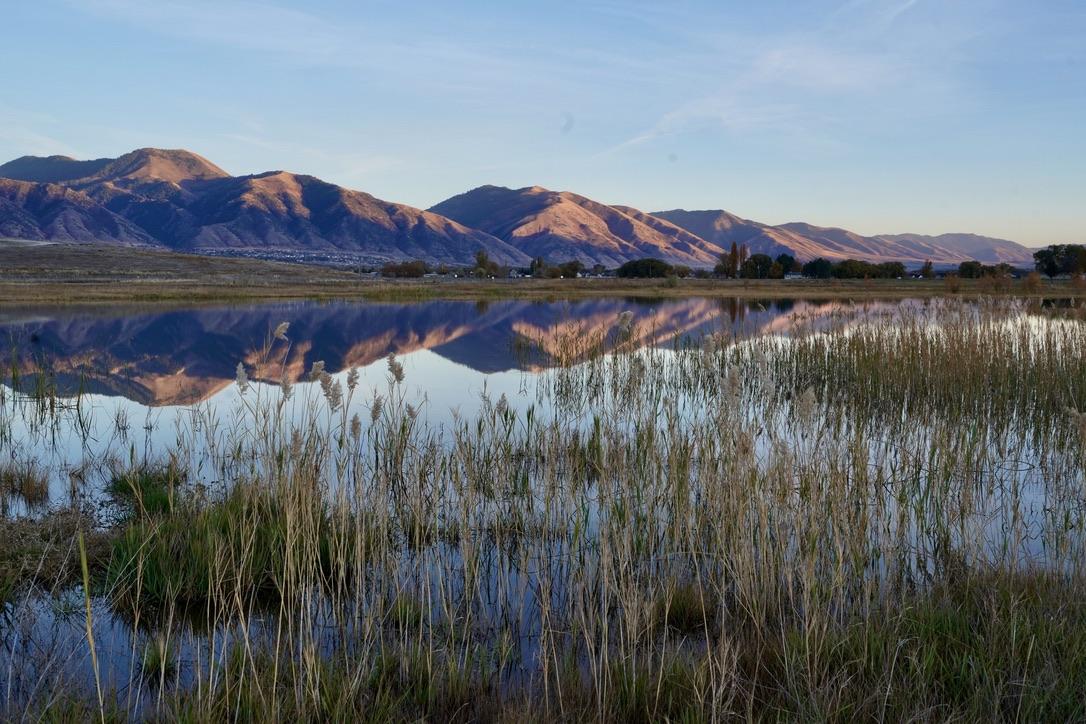 Logan Mitigation Ponds a.k.a. Sue's Ponds Courtesy & © Linda L'Ai, Photographer