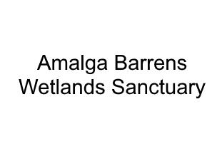 Amalga Barrens Wetlands Sanctuary