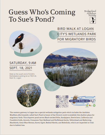 Guess Who's Coming to Sue's Pond?