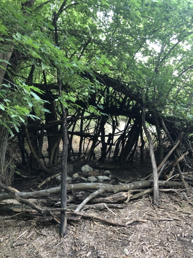 Click to Visit: Campsite under the trees, A cleanup project