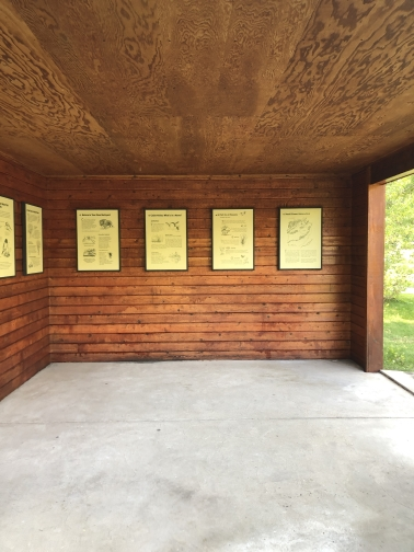 Click to Visit: Kiosk south wall after staining